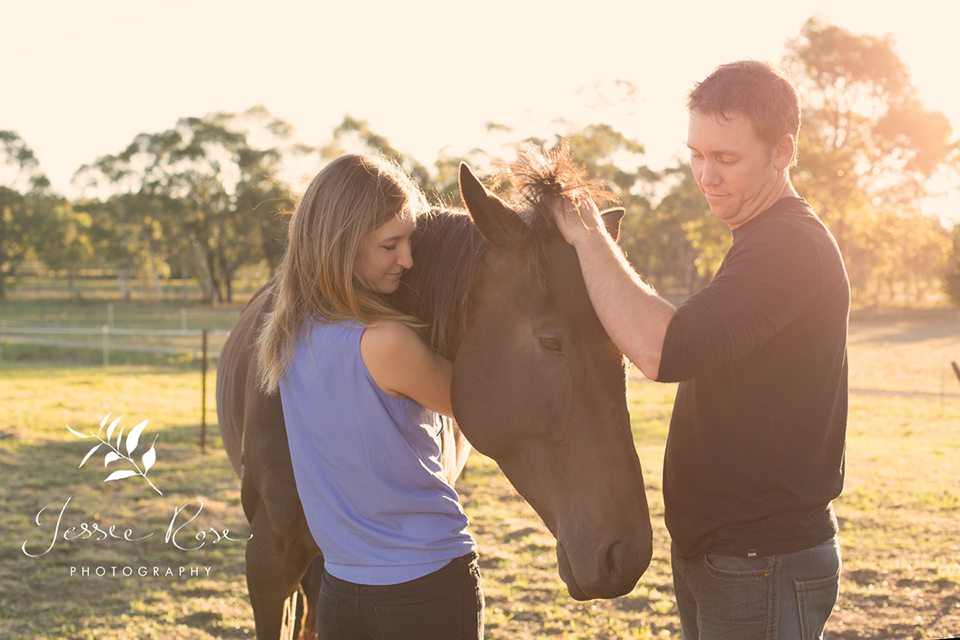 beautiful_love_horse_engagement