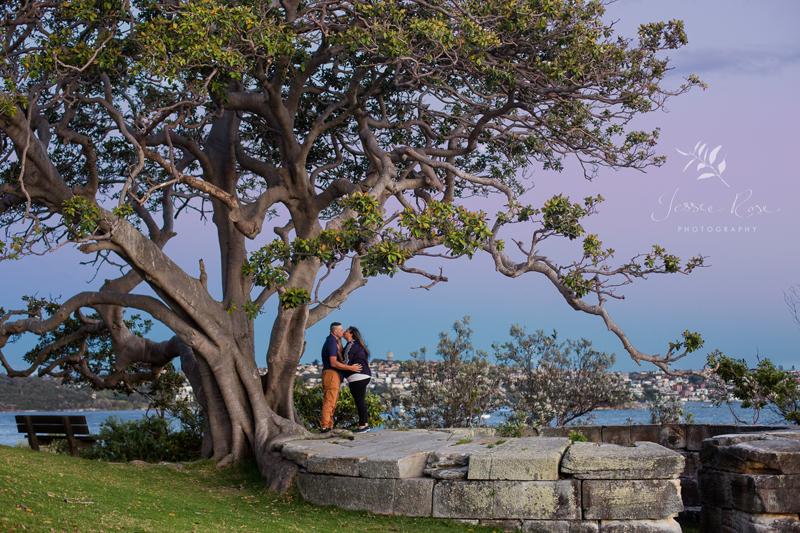 fig-tree-twilight-portrait-session-sydney