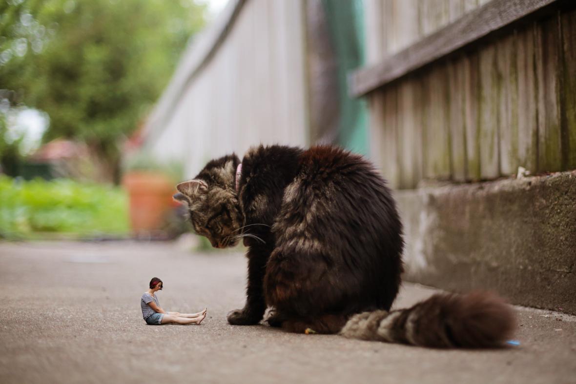212-cat-found-a-tiny-human